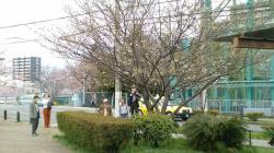 170408_nishinomiya01.jpg