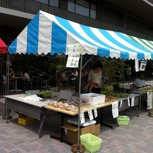 堺キャンパス祭にて
